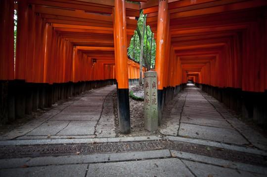 20101026 IMG 6098 540x359 Fushimi Inari taisha Torii